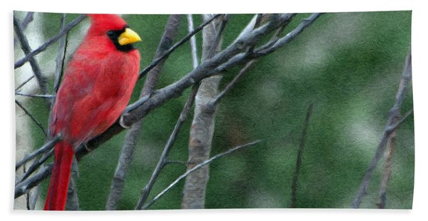 Cardinal West Beach Towel