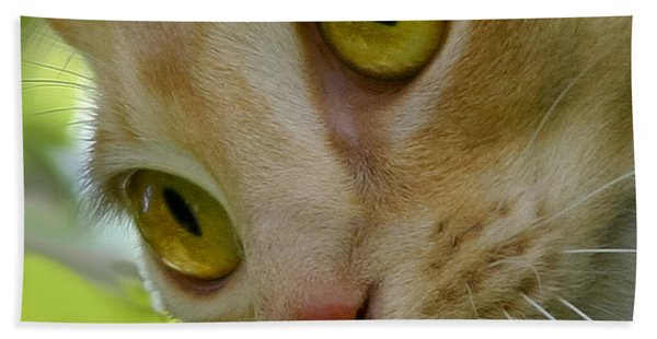 Cats Eyes Beach Towel