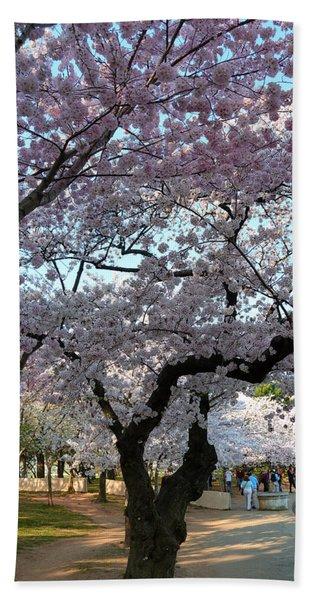 Cherry Blossoms 2013 - 044 Beach Towel