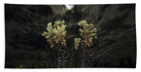 Cholla Light - Joshua Tree National Park Beach Towel
