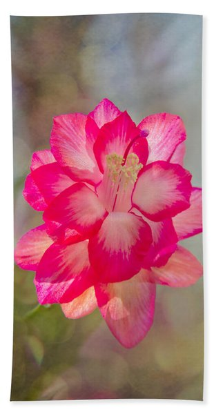 Beach Towel featuring the photograph Christmas Cactus Bokeh by Jemmy Archer