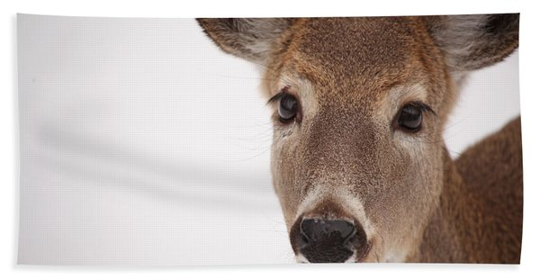 Deer Talk Beach Towel