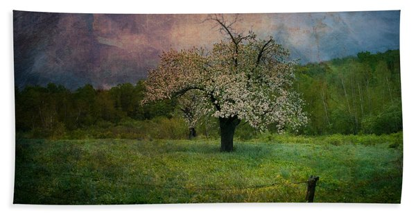 Beach Towel featuring the photograph Dream Of Spring by Jeff Folger