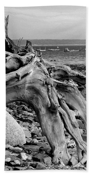 Beach Towel featuring the photograph Driftwood On Rocky Beach by Jemmy Archer