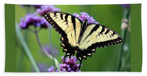 Eastern Tiger Swallowtail Butterfly 2014 Beach Towel
