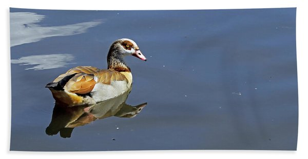 Egyptian Goose Beach Towel