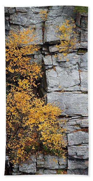 Fall Foliage Colors 01 Beach Towel