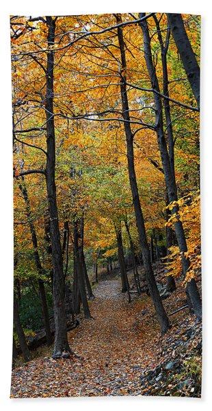Fall Foliage Colors 03 Beach Towel