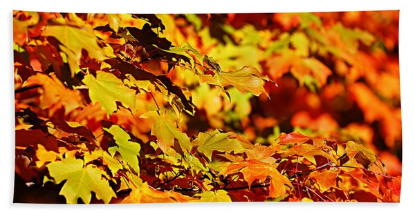 Fall Foliage Colors 13 Beach Towel