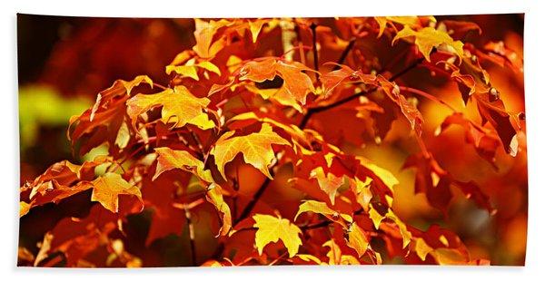 Fall Foliage Colors 14 Beach Towel