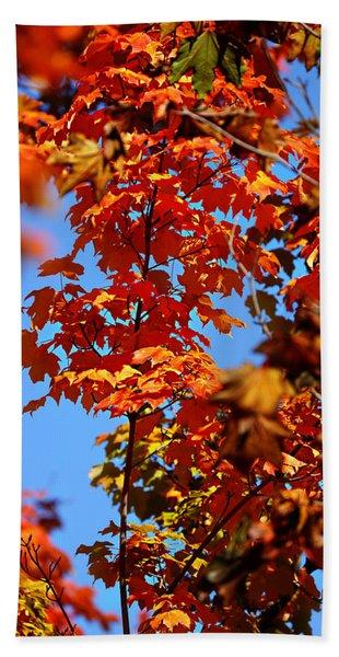 Fall Foliage Colors 15 Beach Towel