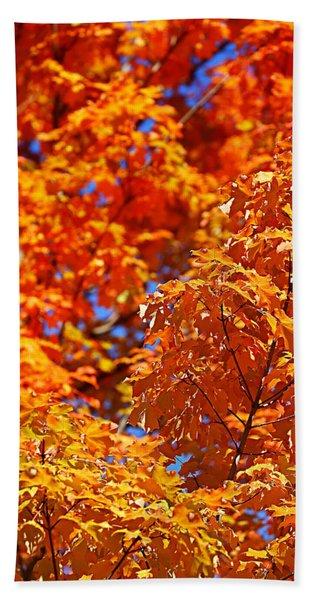 Fall Foliage Colors 17 Beach Towel