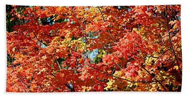Fall Foliage Colors 22 Beach Towel