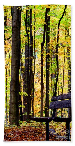 Fall Woods In Michigan Beach Towel