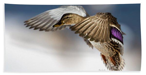 Flight Of The Mallard Beach Towel
