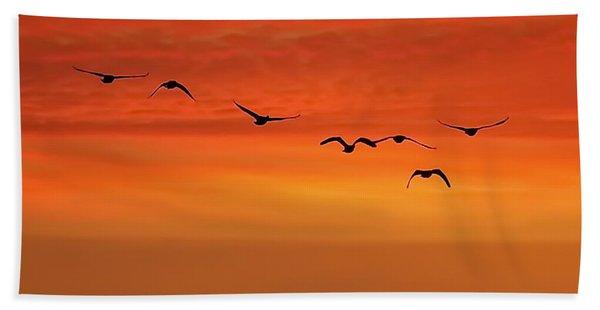 Flying South  Beach Towel