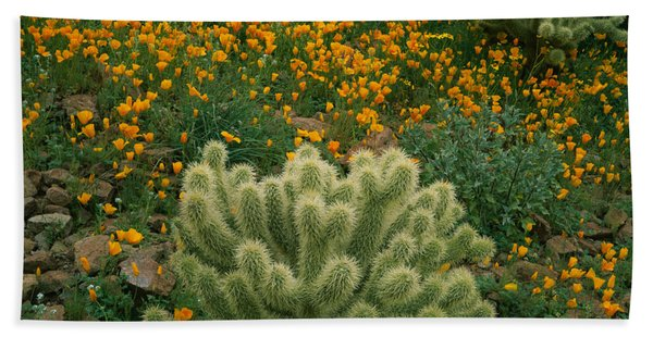High Angle View Of Mexican Gold Poppies Beach Towel