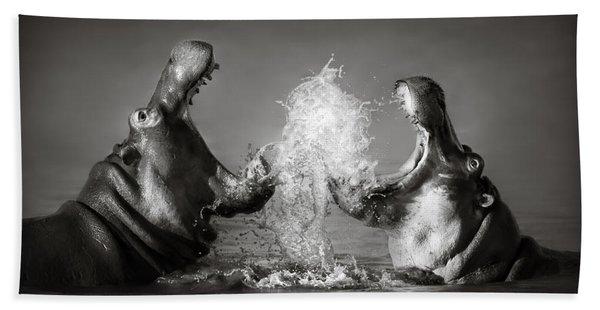 Hippo's Fighting Beach Towel