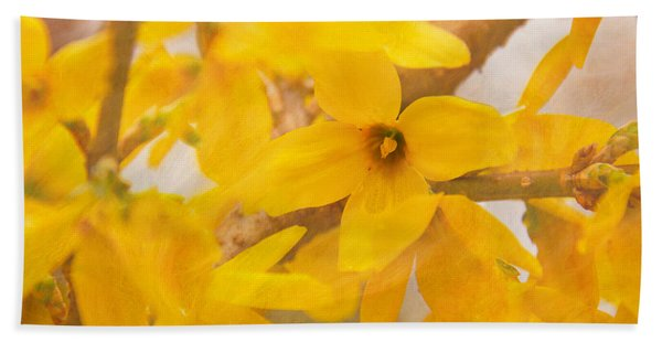 Beach Towel featuring the photograph Impressionist Forsythia by Jemmy Archer