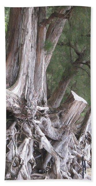 Kauai - Roots Beach Towel