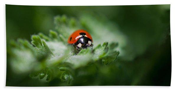 Ladybug On The Move Beach Sheet