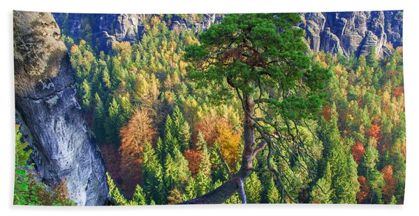 Lonely Tree In The Elbe Sandstone Mountains Beach Towel