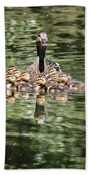 Mallard Hen With Ducklings And Reflection Beach Towel