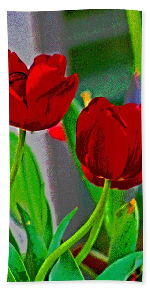 Red Tulips  Beach Towel
