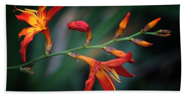 Orange Lily Beach Towel