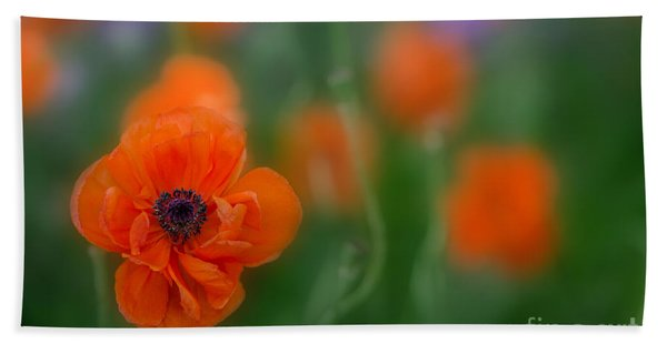 Orange Poppy Beach Towel