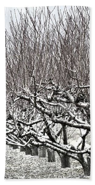 Orchard In Winter Beach Towel