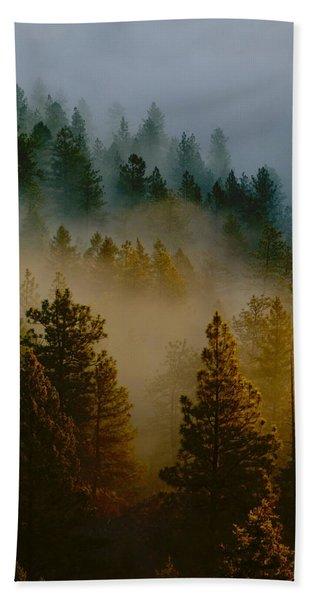 Pacific Northwest Morning Mist Beach Towel