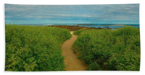 Path To Blue Beach Towel
