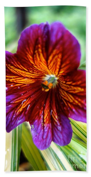 Beach Towel featuring the photograph Purple And Orange by Jacqueline Athmann