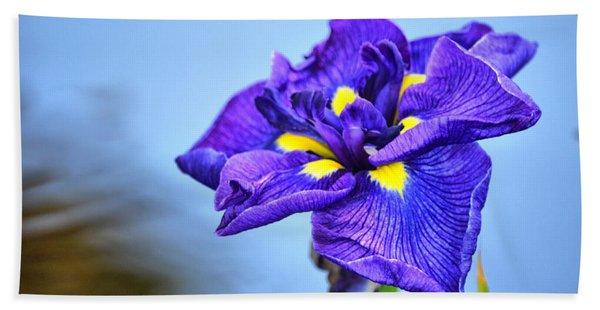 Purple Pond Iris Beach Towel