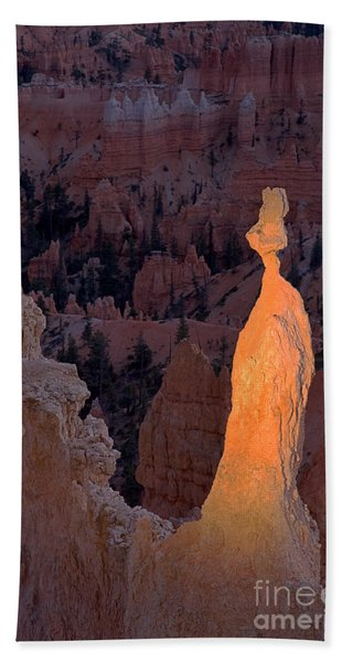 Rabbit Sunset Point Bryce Canyon National Park Beach Towel