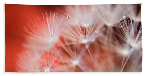 Raindrops On Dandelion Red Beach Towel