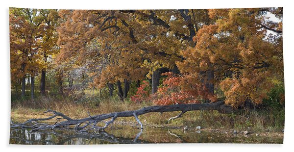 Red Oaks On The Shore Beach Towel