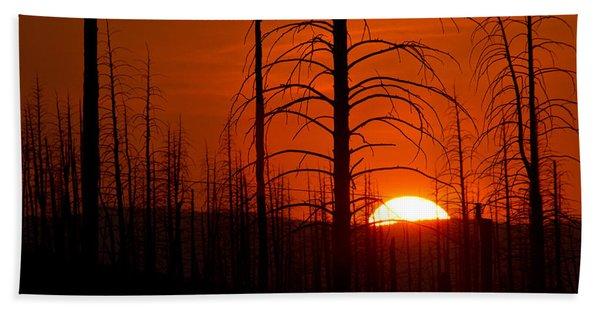 Requiem For A Forest Beach Sheet