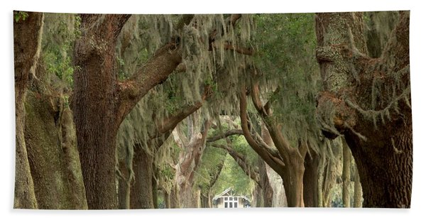 Retreat Avenue Of The Oaks Beach Towel