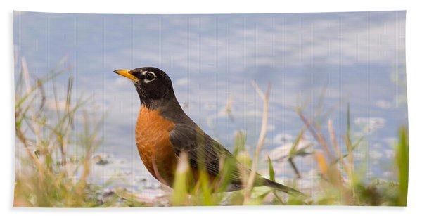 Robin Viewing Surroundings Beach Towel