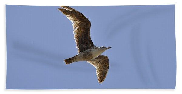 Seagull N Light  Beach Towel