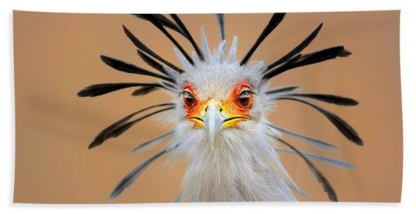 Secretary Bird Portrait Close-up Head Shot Beach Towel