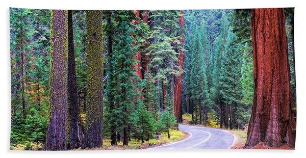 Sequoia Hwy Beach Sheet