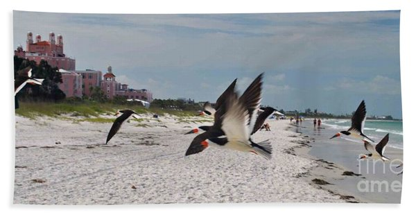 Black Skimmers At Don Cesar Beach Towel