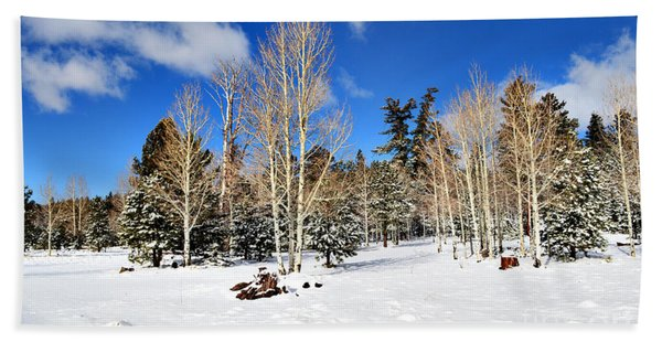 Snowy Aspen Grove Beach Towel