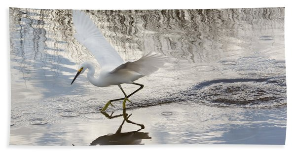 Snowy Egret Gliding Across The Water Beach Towel