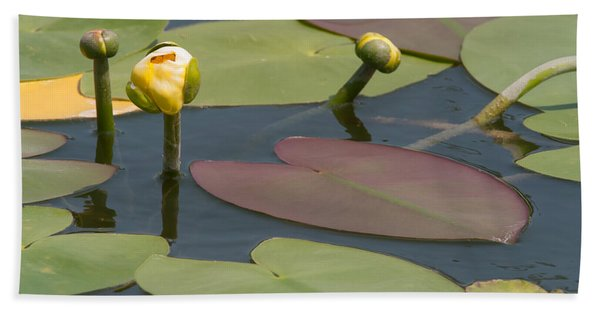 Spatterdock Heart Beach Towel