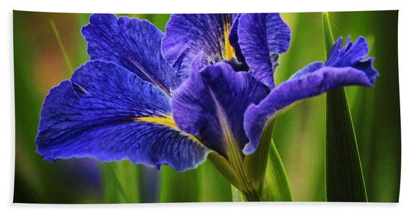 Spring Blue Iris Beach Towel