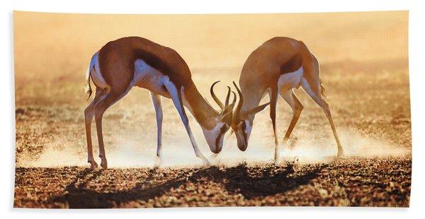 Springbok Dual In Dust Beach Towel